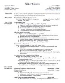 Resume Objective Ideas by Objective Statements For Resumes Berathen
