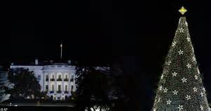 Christmas 2012 Obama Family Lights National Christmas Lights Washington Dc