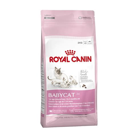canin food buy royal canin baby cat 34 cat food 2kg