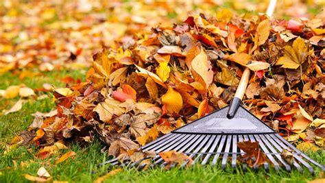 Préparer Jardin Pour L Hiver by Comment Pr 233 Parer Votre Jardin Pour L Hiver Renson