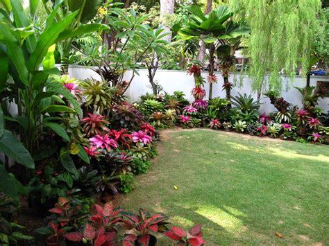 pearl s bromeliad garden singapore tropical garden style singapore gardens