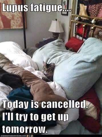 Sle Meme - today is cancelled lupus awareness pinterest