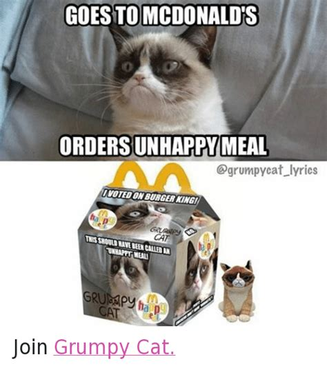 grumpy cat joins cats on goes to mcdonalds orders unhappy meal cat lyrics