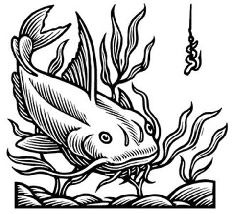 drawings  catfish   clip art