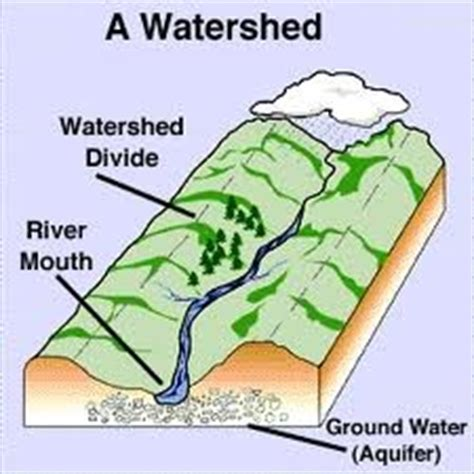 watershed management resources and the environment