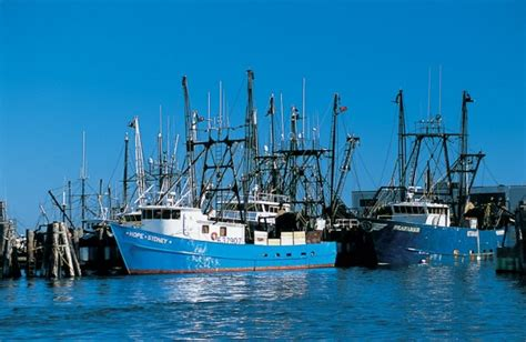boat supplies hyannis ma point judith ri sees influx of fishing boats new