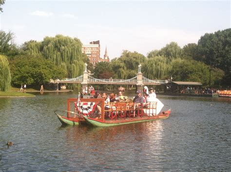 swan boats in the boston public garden swan boats on the duck pond in the boston public garden