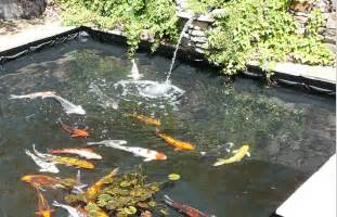 Remember that pond liner is the main material to build a fish pond