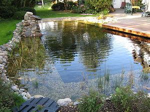 Gartengestaltung Mit Pool 2010 by Ga La Bau T Ziggel Gt Schwimmteich