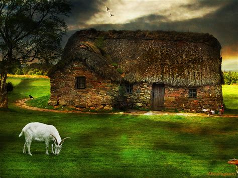 cottage scozia photo of the moment picture cottage scotland