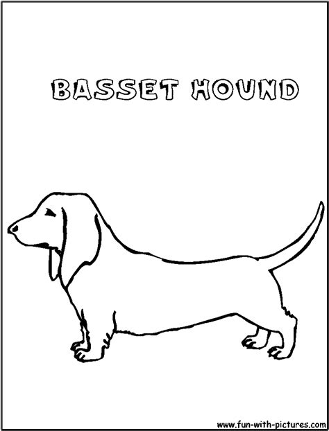free coloring pages of basset hound