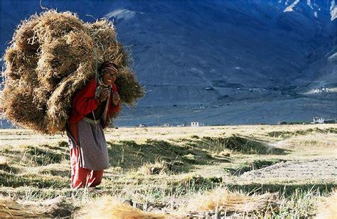 himalayan l himalaya terre des femmes