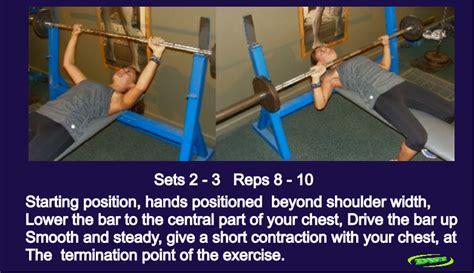 bench strength definition weight training program for women