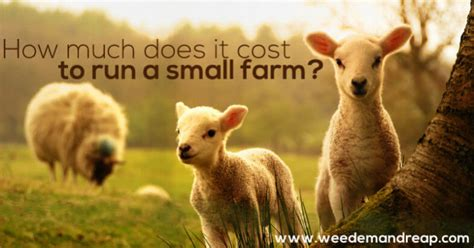 How Much Does It Cost To Run A Background Check How Much Does It Cost To Run A Small Farm
