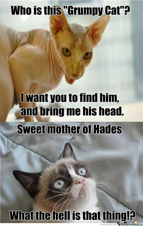 Grumpy Cat Meme Clean - who is this grumpy cat grumpy cat memes picsmine