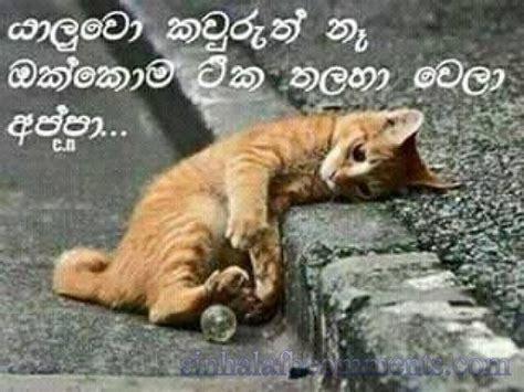 Quotes On Home Design yaluwo okkoma tharaha wela appa sinhala facebook photo