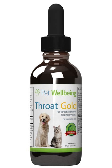 robitussin dm for dogs 25 best ideas about cough medicine for dogs on puppy cough keeps