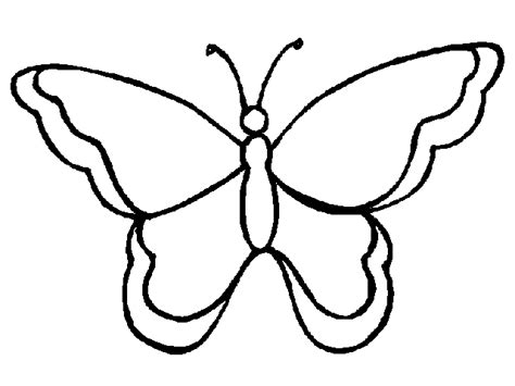 blank butterfly templates clipart best