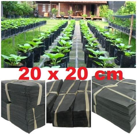 Polybag 10x13cm 1 Kg polybag 20x20cm 1 kg bibitbunga