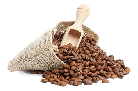 Srijaya Luwak Cofee Premium Bean coffeebabe premium organic coffee for a smarter lifestyle