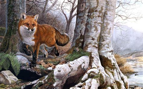 fox woodworking fox wood coast river wallpaper hd wallpapers13