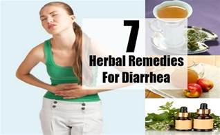 home remedy diarrhea top 7 herbal remedies for diarrhea best herbs for