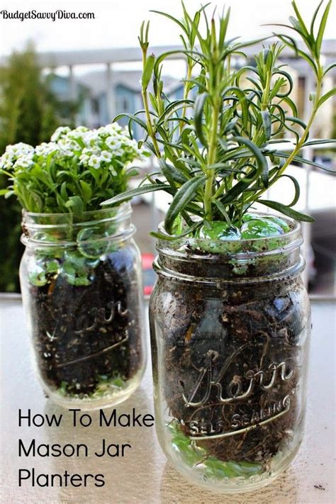 Jar Herb Planter by Grow Herbs In Your Kitchen With Jar Planters