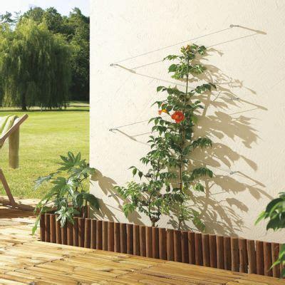 Attache Plante Grimpante by C 226 Ble De Fixation En Acier 10m Castorama