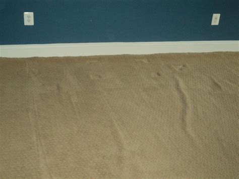 Buckled Carpet by Premature Wall To Wall Carpet Buckling Can Be Avoided