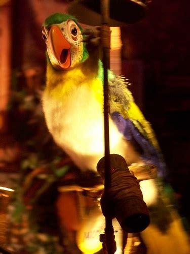 tiki room birds tiki room disney what a wonderful world