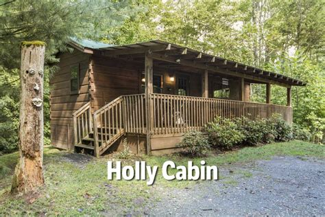 Cabins For Couples by Pet Friendly Nc Mountain Cabins Dogs Welcome