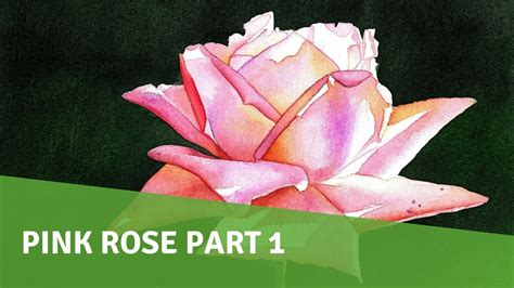 watercolor tutorial part 1 watercolor painting tutorial pink rose part 1 youtube