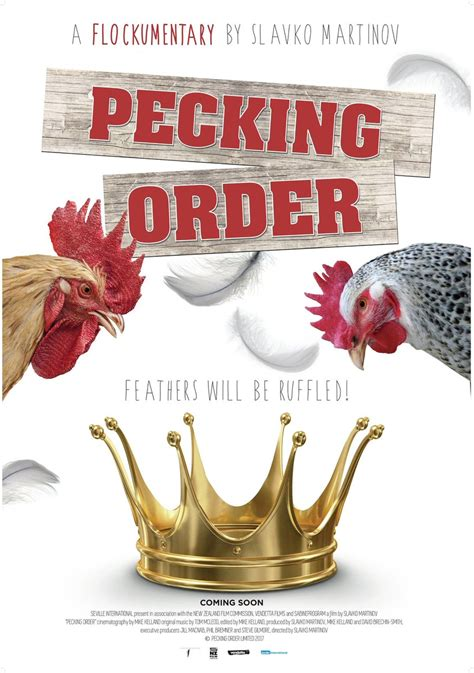 Packing Orderan pecking order review and tv now