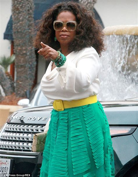 oprah winfrey denies tina turner suffered stroke at
