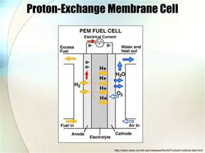 Proton Exchange Membrane Fuel Cell Ppt Fuel Cells Powerpoint Presentation Id 773313