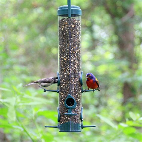 Outside Bird Feeders Pet Classic Bird Feeder 480