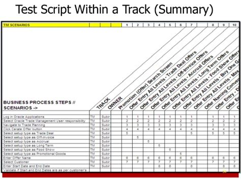 test script template erp project management primer