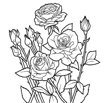 unique coloring pages flower unique coloring page for