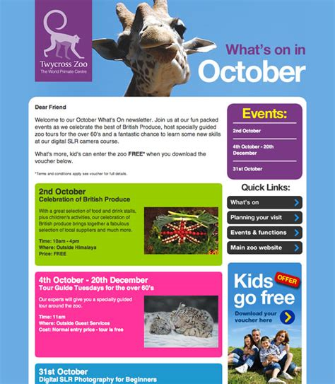 event newsletter template athmail bulk email marketing service