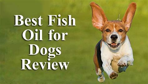 best fish for dogs best fish for dogs review pronutrics