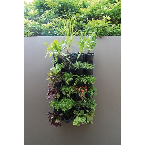 vertical garden wall kit holman greenwall vertical garden kit bunnings warehouse