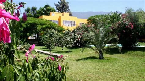 garten löwenzahn ferienhaus la palma quot finca tropical quot im botanischen garten
