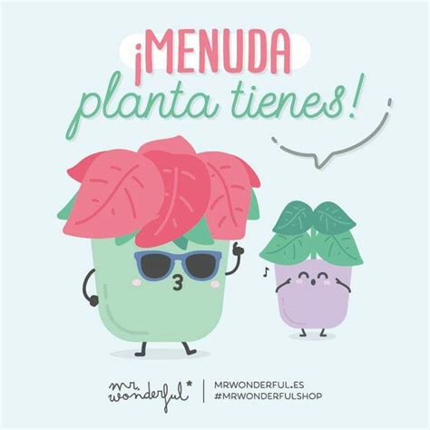mister wonderful a love 0224085344 1000 ideas about mr wonderful on quotes frases and love