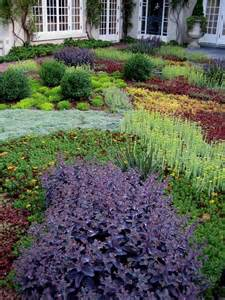 low growing sedum thyme and other ground cover plants make a good alternative to grass green