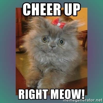 Cheer Up Cat Meme - cheer up right meow cute cat meme generator