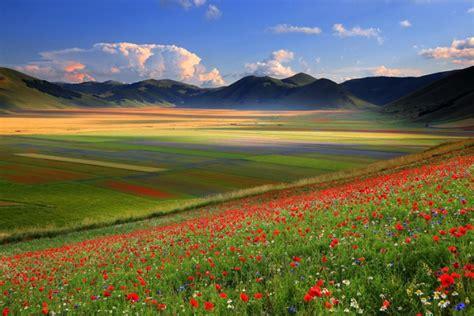 fiorita castelluccio di norcia castelluccio di norcia italia meravigliosa