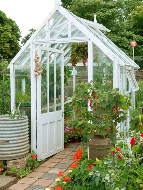 small backyard greenhouse backyard ideas hgtv