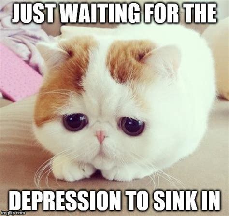 Meme Depression - depressed cat memes image memes at relatably com