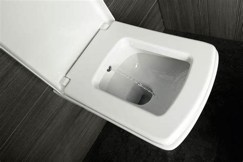 toilettenschüssel mit bidet wand wc soluzione mit bidet einrichtung h 228 nge wc 35 x 50