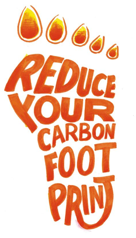 House Builder Online 5 Tips To Reduce Your Carbon Footprint Atlanta Pest Control